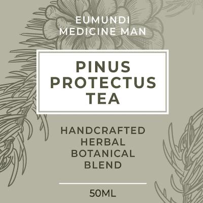 Pine Needle Tea 50ml (Pinus Protectus)