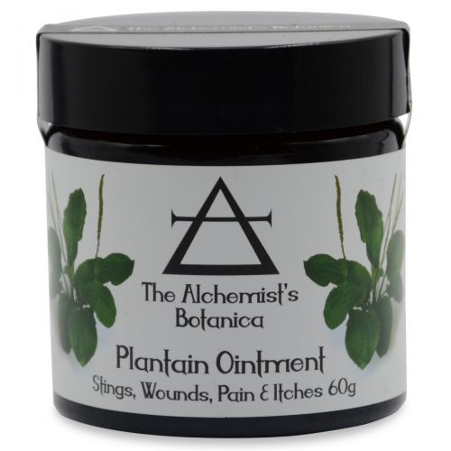 Plaintain Ointment 60g